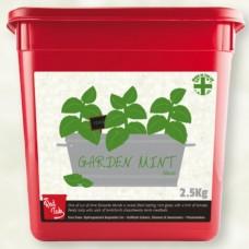MRC Flavaglaze Garden Mint Glaze 2.5Kg