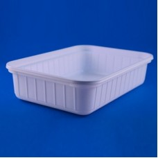 Thermoformed Trays 180x120x42mm  Pack of 250