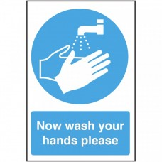 Now Wash Your Hands Please Self Adhesive Vinyl 300x200mm
