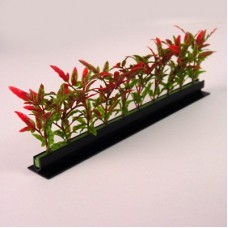 Garnish Red/Green NewEngland Black Base 250mm